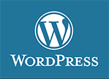Advanced Vitaily at WordPress